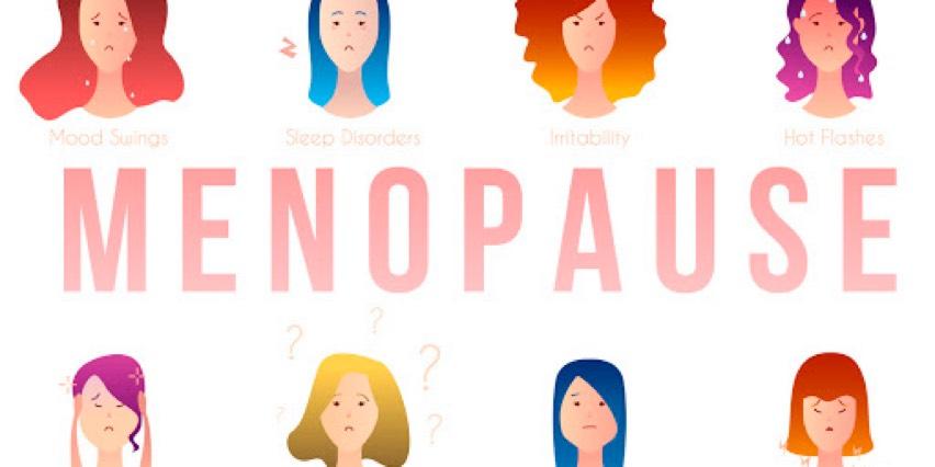 Menopause Bowl bowl icon