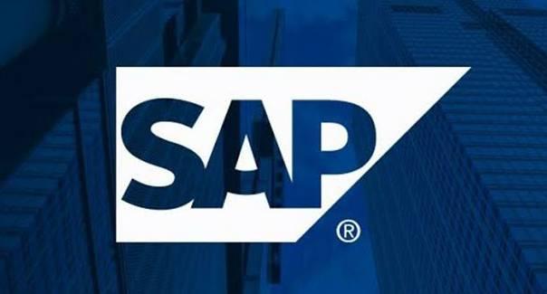 SAP Consultants India bowl icon