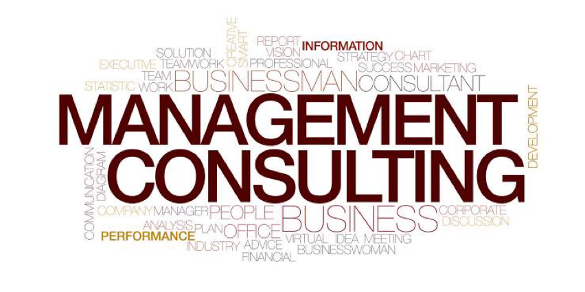 Management Consulting India  bowl icon