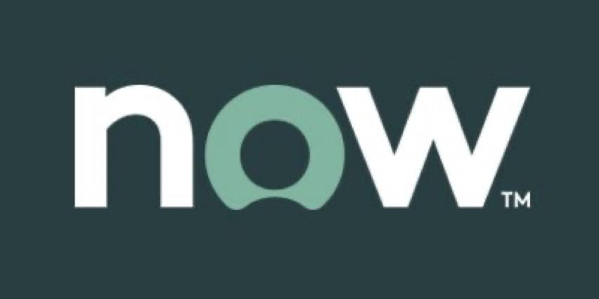 ServiceNow Consultants bowl icon