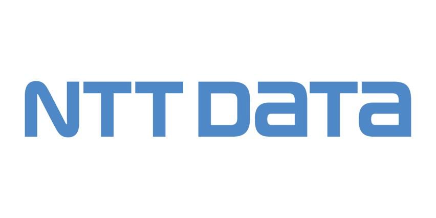 NTT Data bowl icon