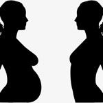 Fertility Bowl bowl icon