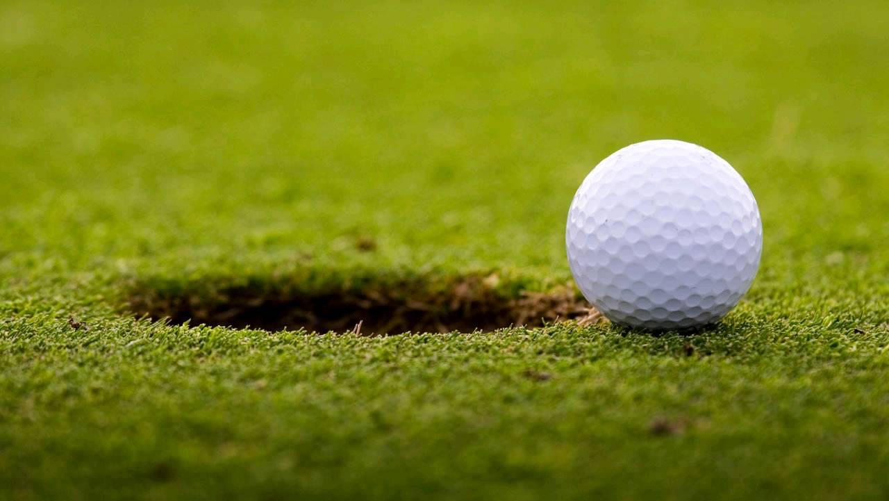 Golfers Bowl bowl icon