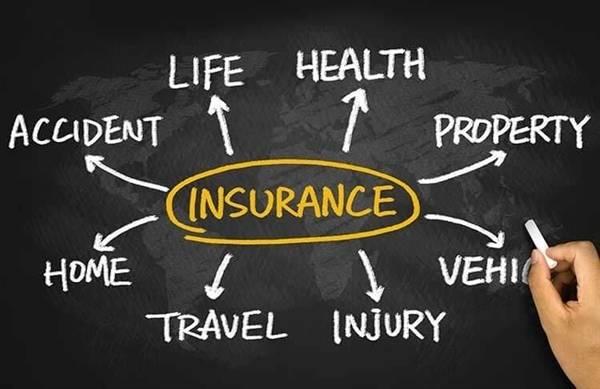 Insurance consultants bowl icon