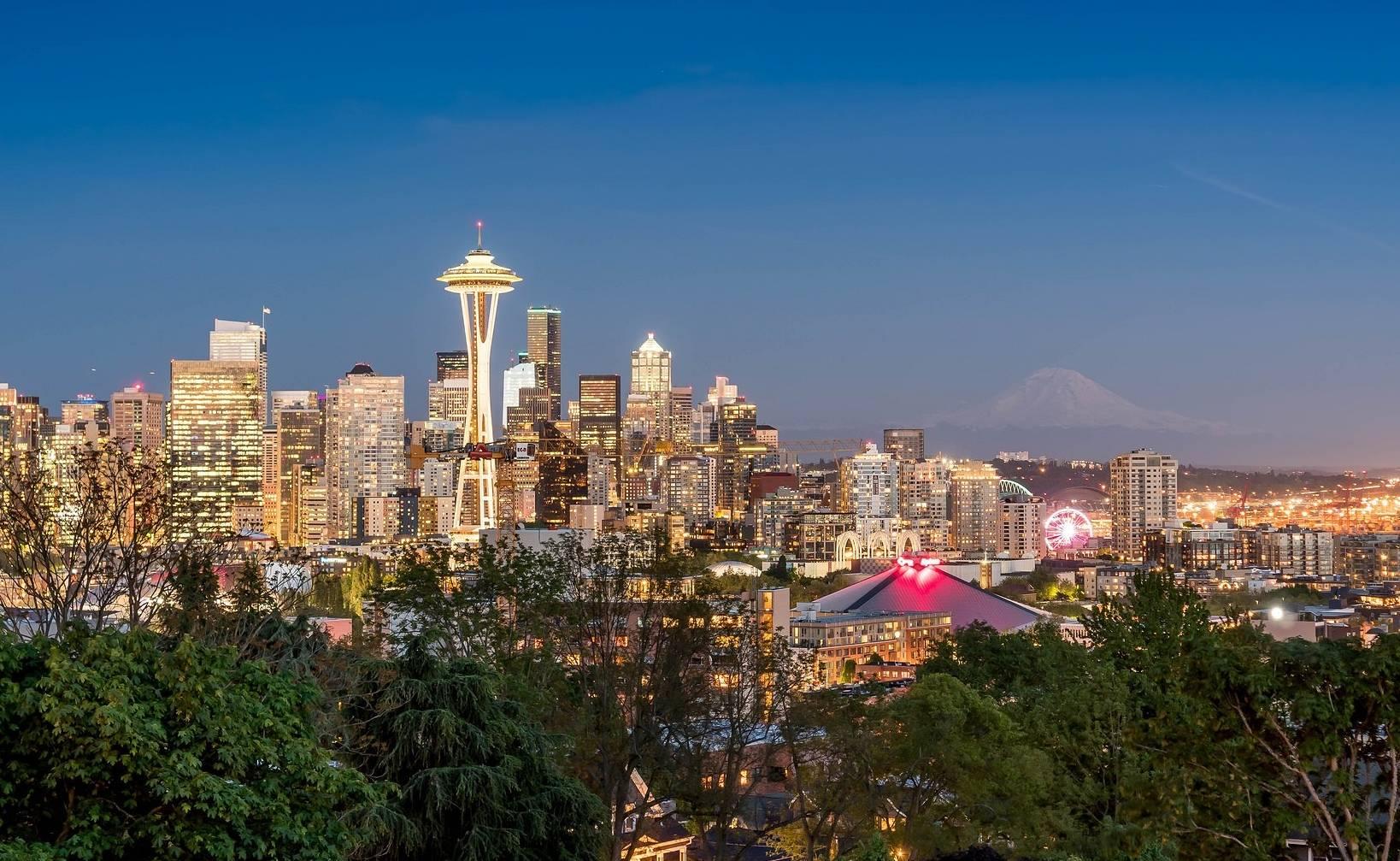 Seattle bowl icon