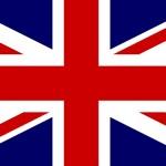 UK Bowl bowl icon