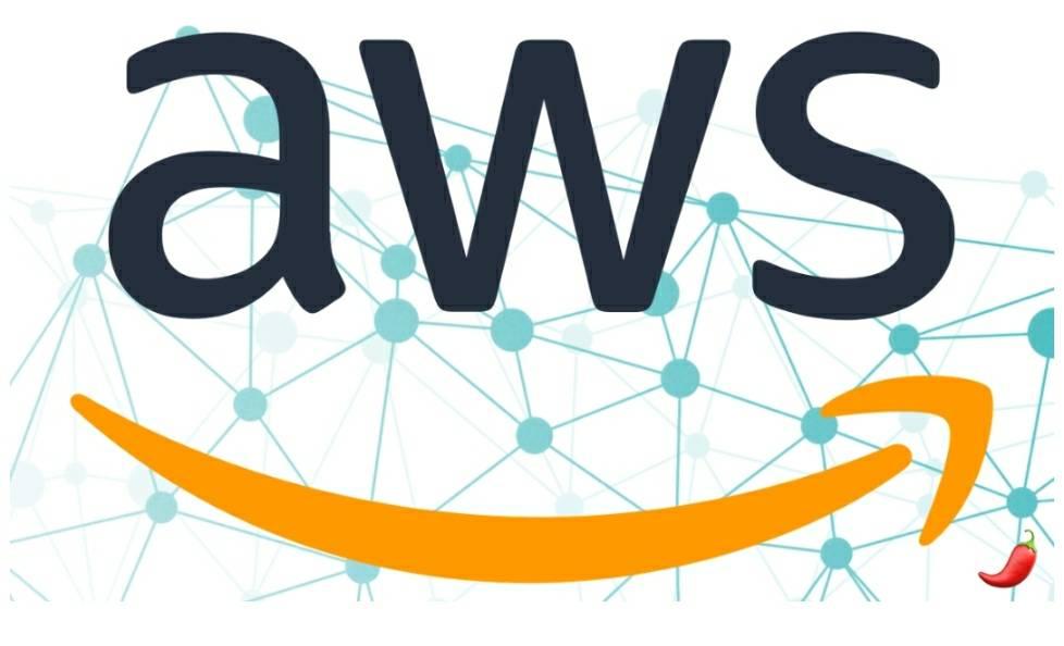 AWS Professionals bowl icon