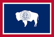 Wyoming Teachers bowl icon