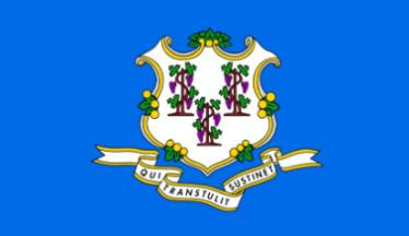 Connecticut Teachers bowl icon