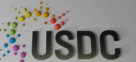Deloitte USDC bowl icon