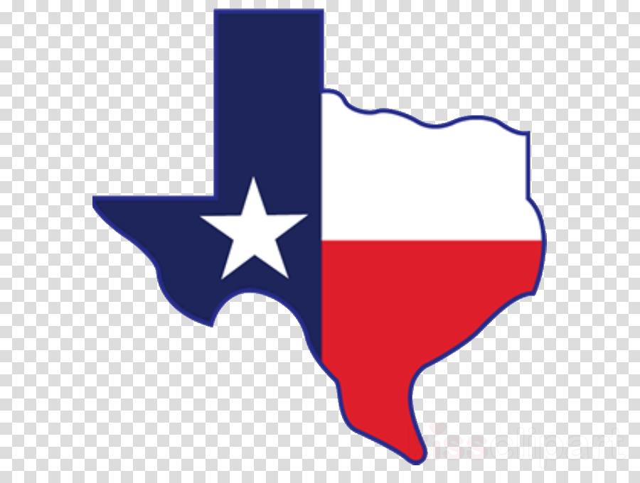 Dallas (Consulting) bowl icon