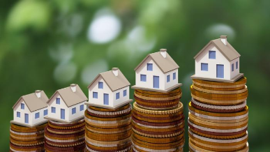 Real Estate Professionals bowl icon