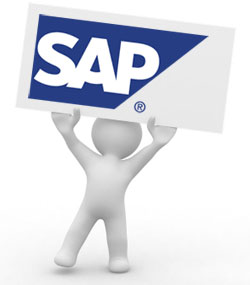 SAP Consultants bowl icon