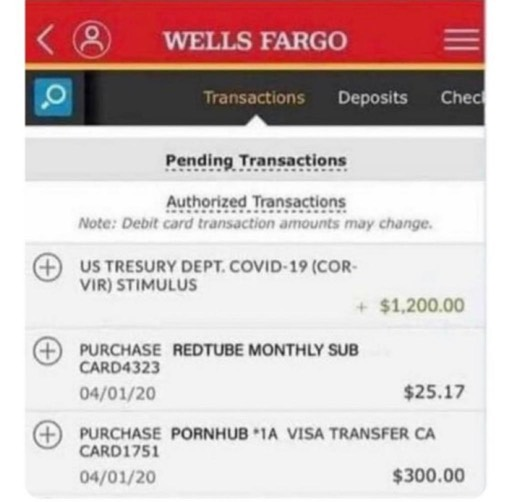 Someone Posted A Hilarious Screenshot Of Their Wells Fargo Deposit Saying That The Stimulus Checks Came In I Wanted To Grab It To Send To A Friend But Can T It Anywhere Online